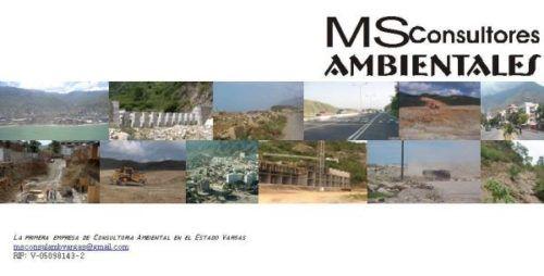 MS Consultores Ambientales